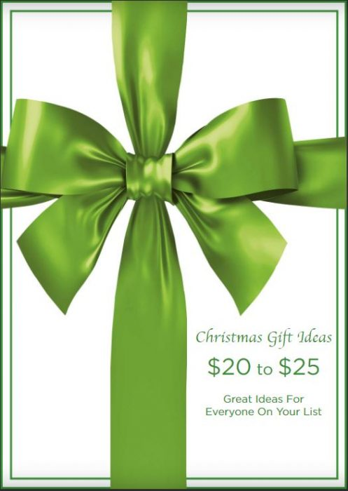 Christmas Gift Ideas $20 to $25